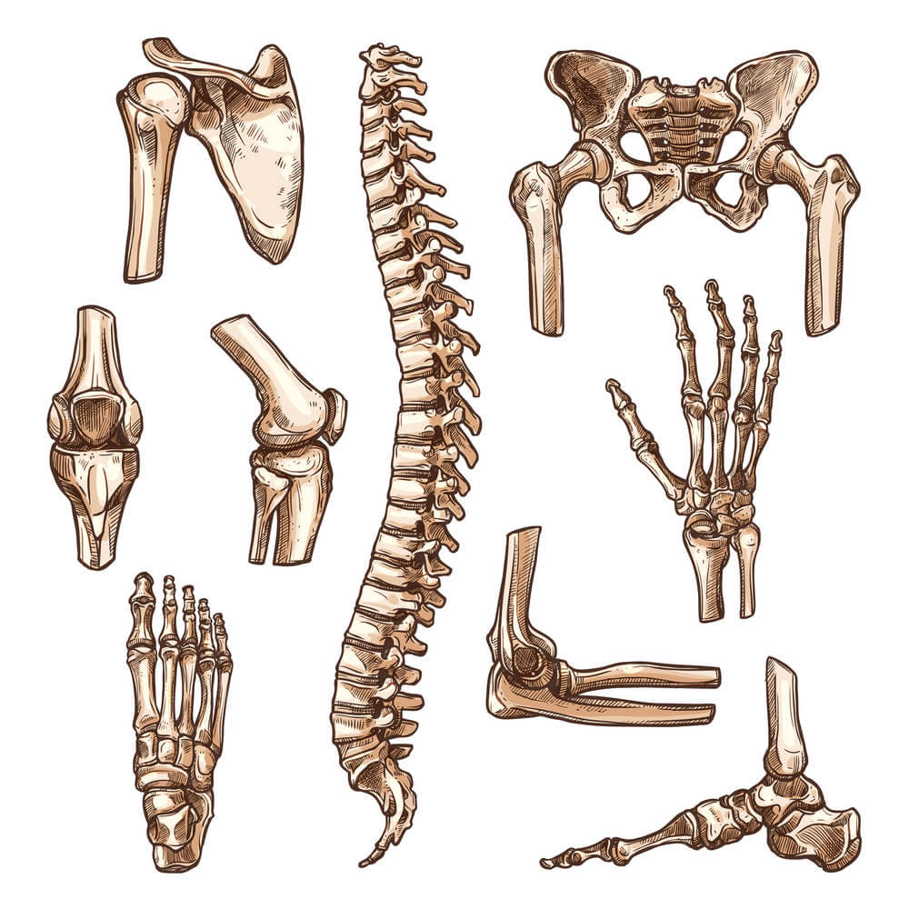 Best Orthopedic Doctor/Surgeon in Ahmedabad, Gujarat